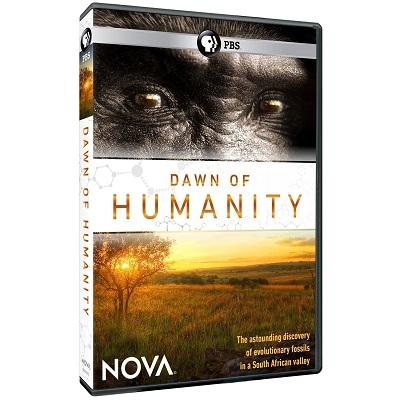 dawn-of-humanity.jpg